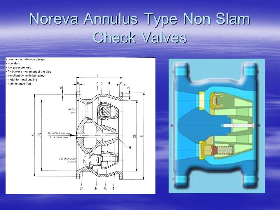 Noreva Annulus Type Non Slam Check Valves