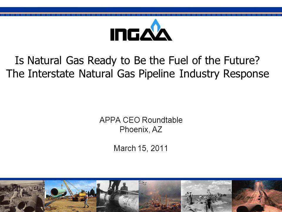 APPA CEO Roundtable Phoenix, AZ March 15, 2011