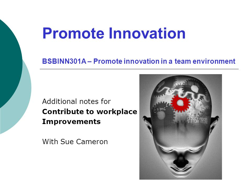 Promote Innovation BSBINN301A – Promote innovation in a team environment