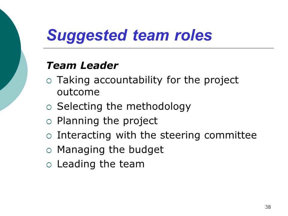 Suggested team roles Team Leader