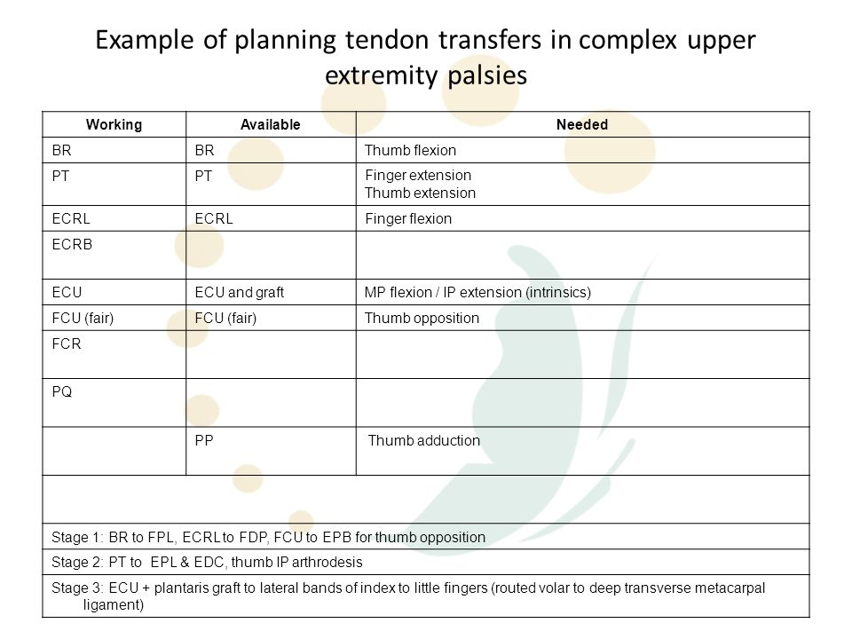 Example of planning tendon transfers in complex upper extremity palsies
