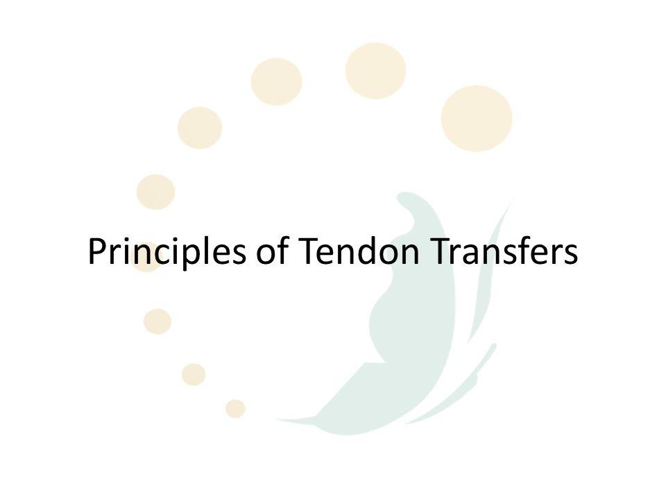Principles of Tendon Transfers
