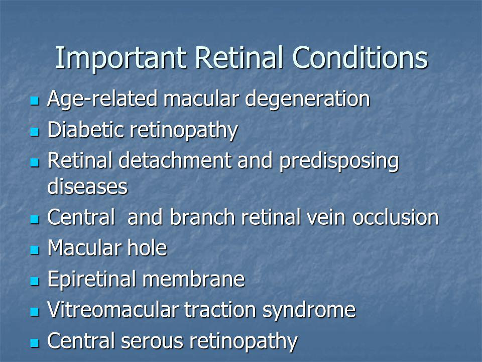 Important Retinal Conditions