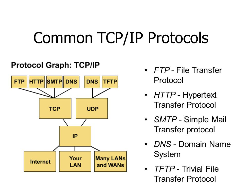 Common TCP/IP Protocols