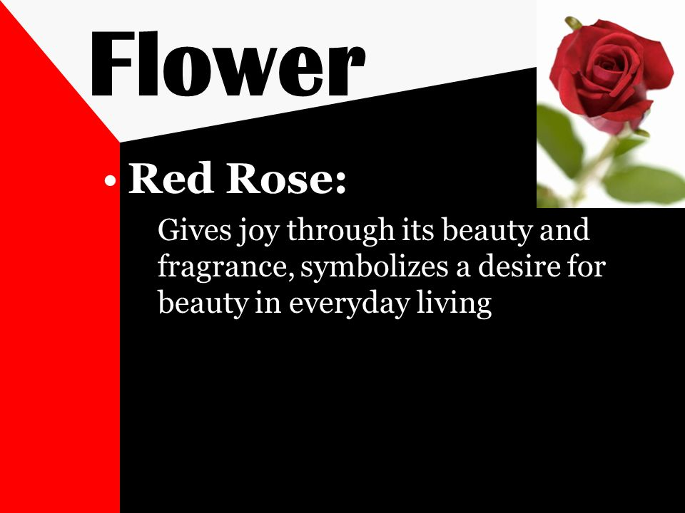 Flower Red Rose: Gives joy through its beauty and fragrance, symbolizes a desire for beauty in everyday living.