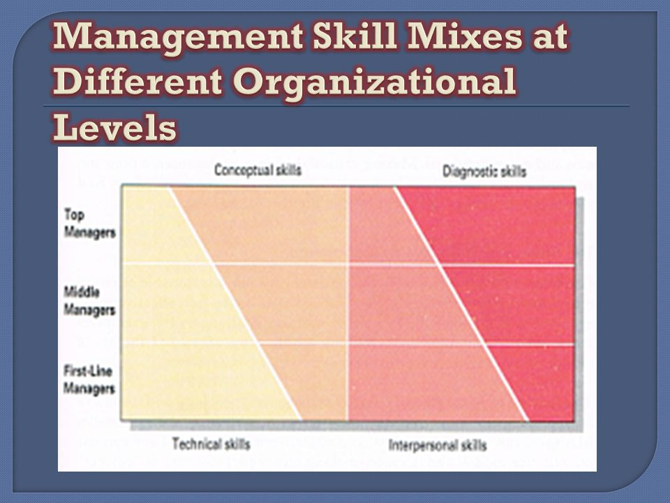 Management Skill Mixes at Different Organizational Levels