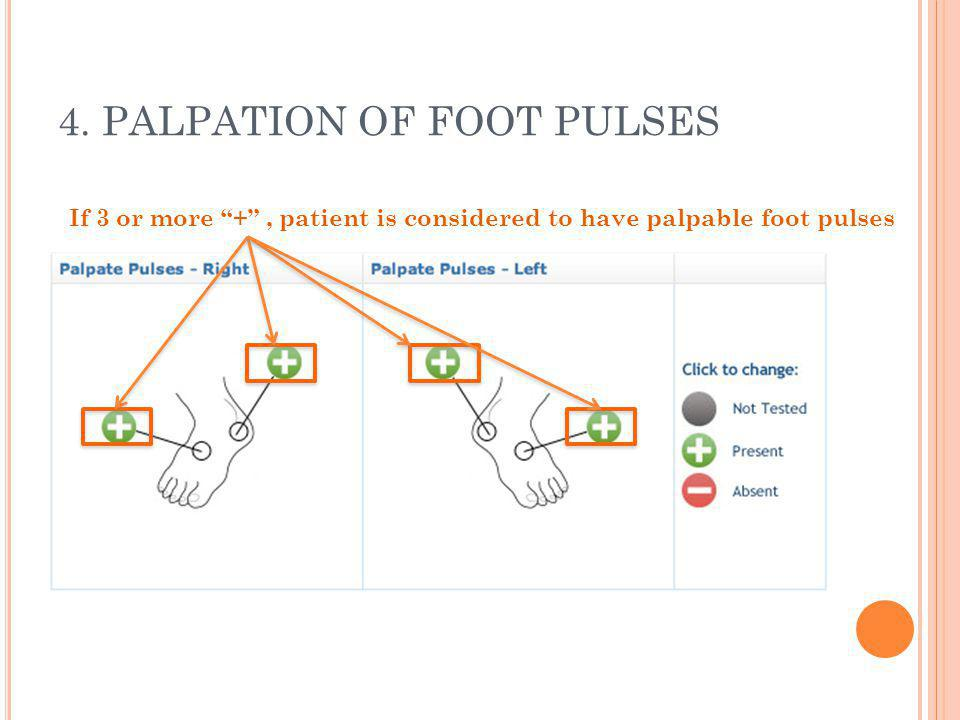 4. PALPATION OF FOOT PULSES