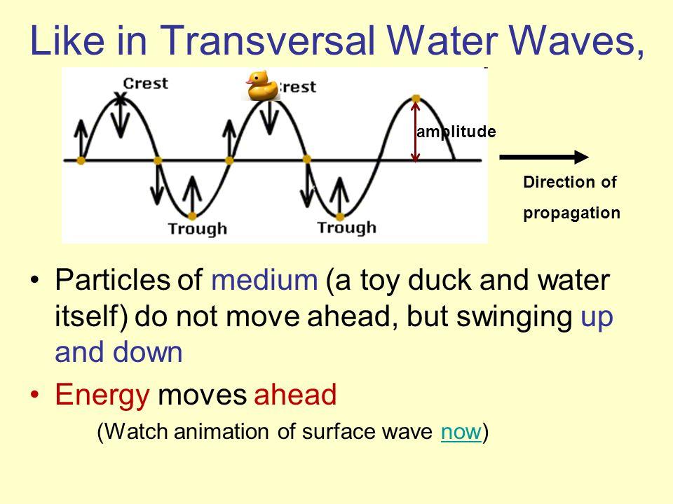 Like in Transversal Water Waves,