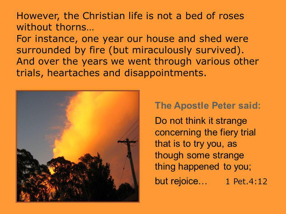 However, the Christian life is not a bed of roses without thorns…