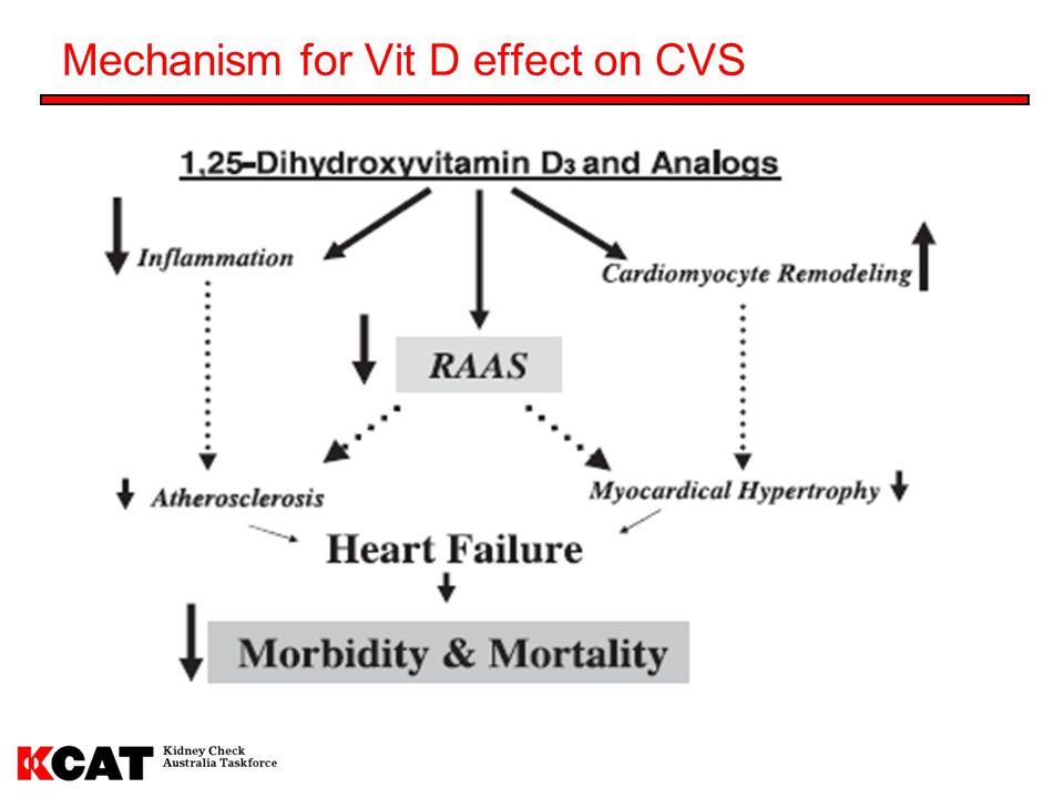 Mechanism for Vit D effect on CVS