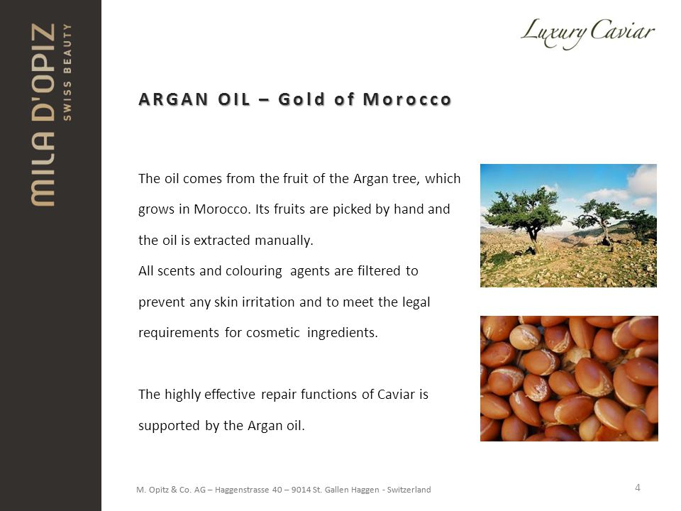 ARGAN OIL – Gold of Morocco