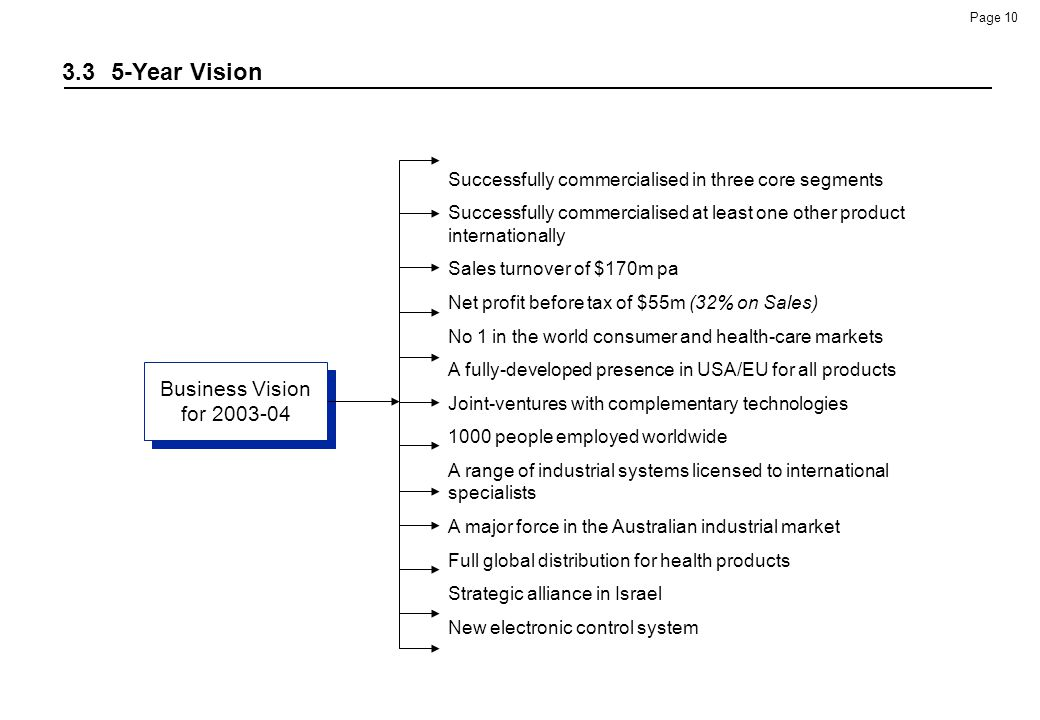 3.3 5-Year Vision Business Vision for 2003-04