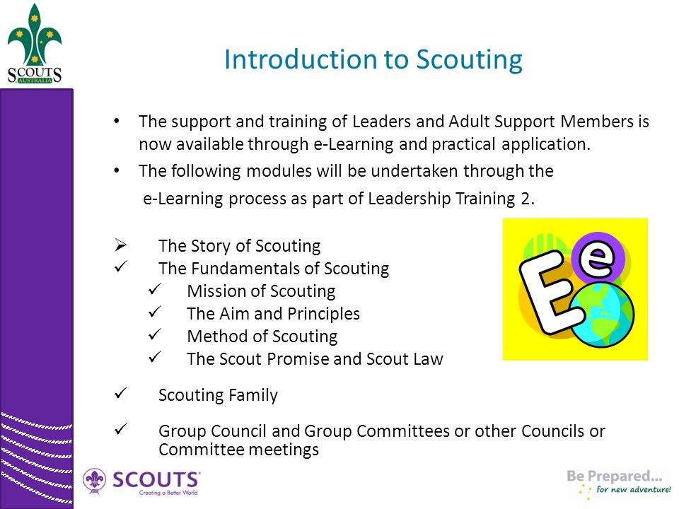 Introduction to Scouting