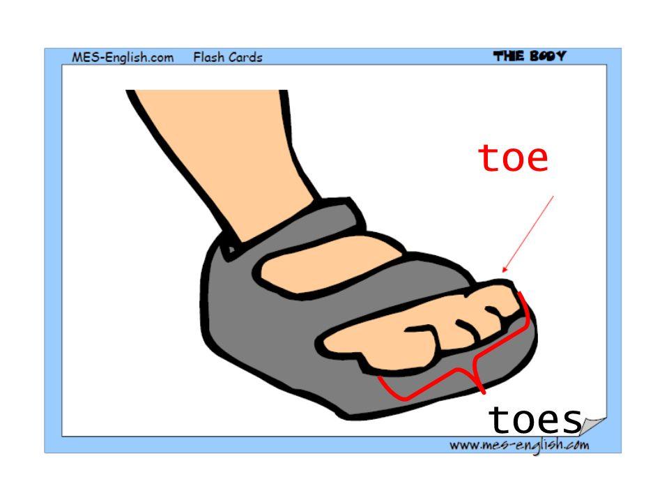 toe toes