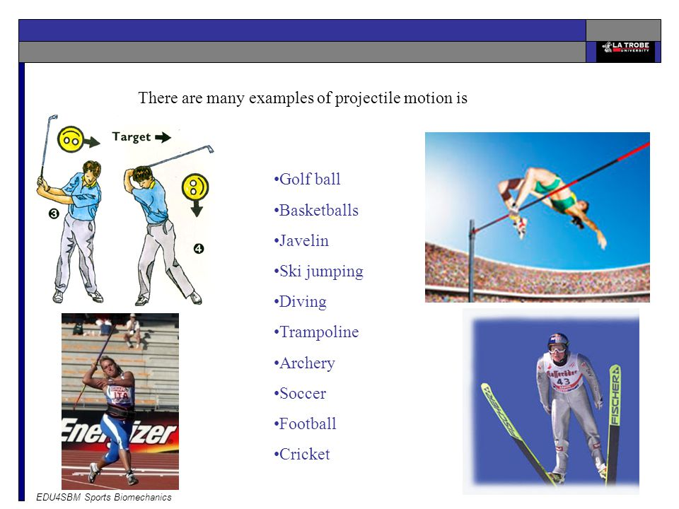 There are many examples of projectile motion is sport.