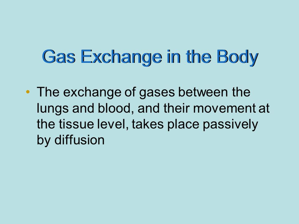 Gas Exchange in the Body