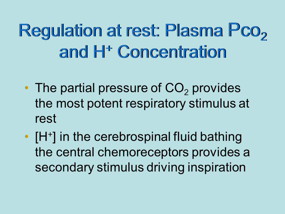 Regulation at rest: Plasma Pco2 and H+ Concentration