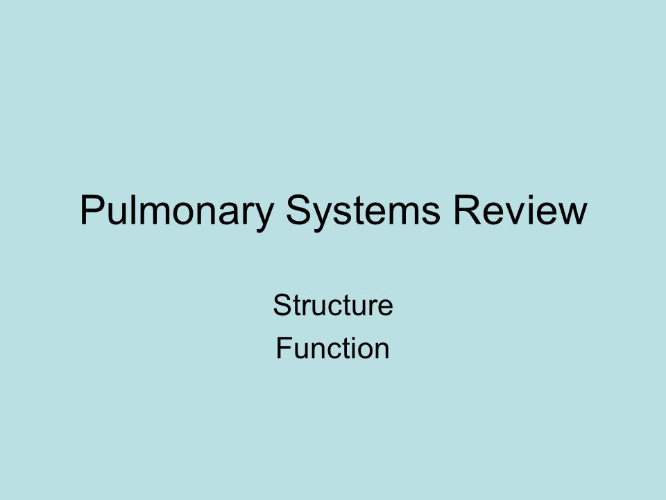 Pulmonary Systems Review