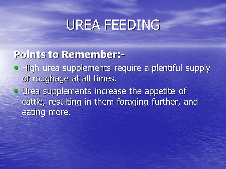 UREA FEEDING Points to Remember:-