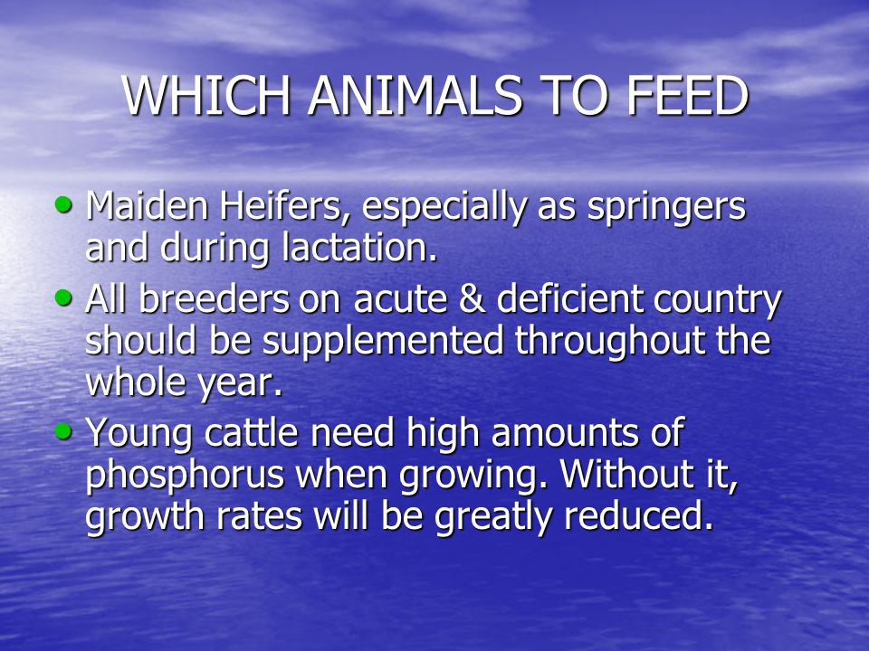 WHICH ANIMALS TO FEED Maiden Heifers, especially as springers and during lactation.