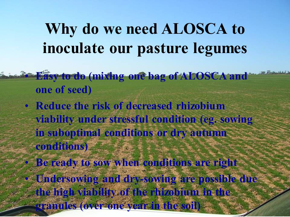 Why do we need ALOSCA to inoculate our pasture legumes