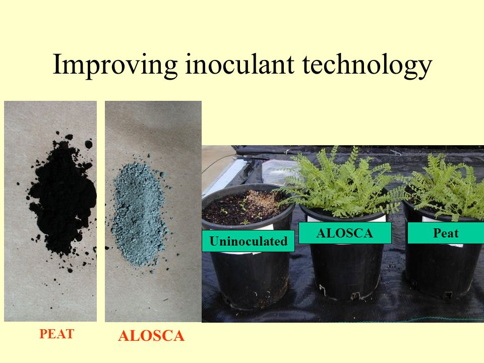 Improving inoculant technology