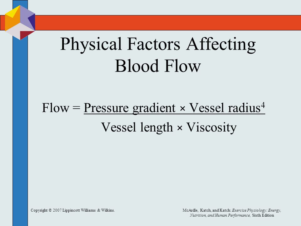 Physical Factors Affecting Blood Flow
