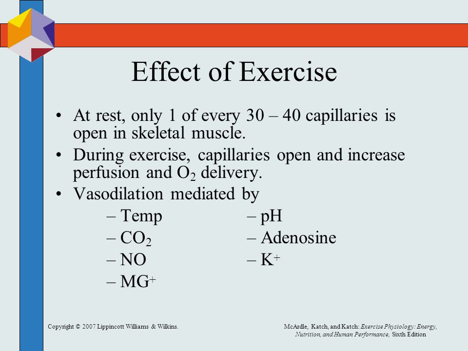 Effect of Exercise At rest, only 1 of every 30 – 40 capillaries is open in skeletal muscle.
