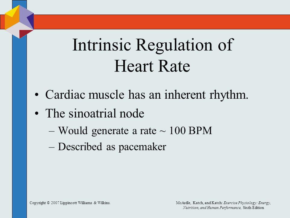 Intrinsic Regulation of Heart Rate