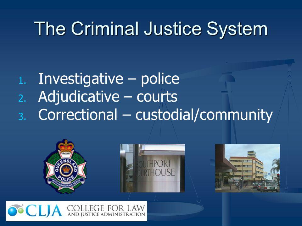 The Criminal Justice System