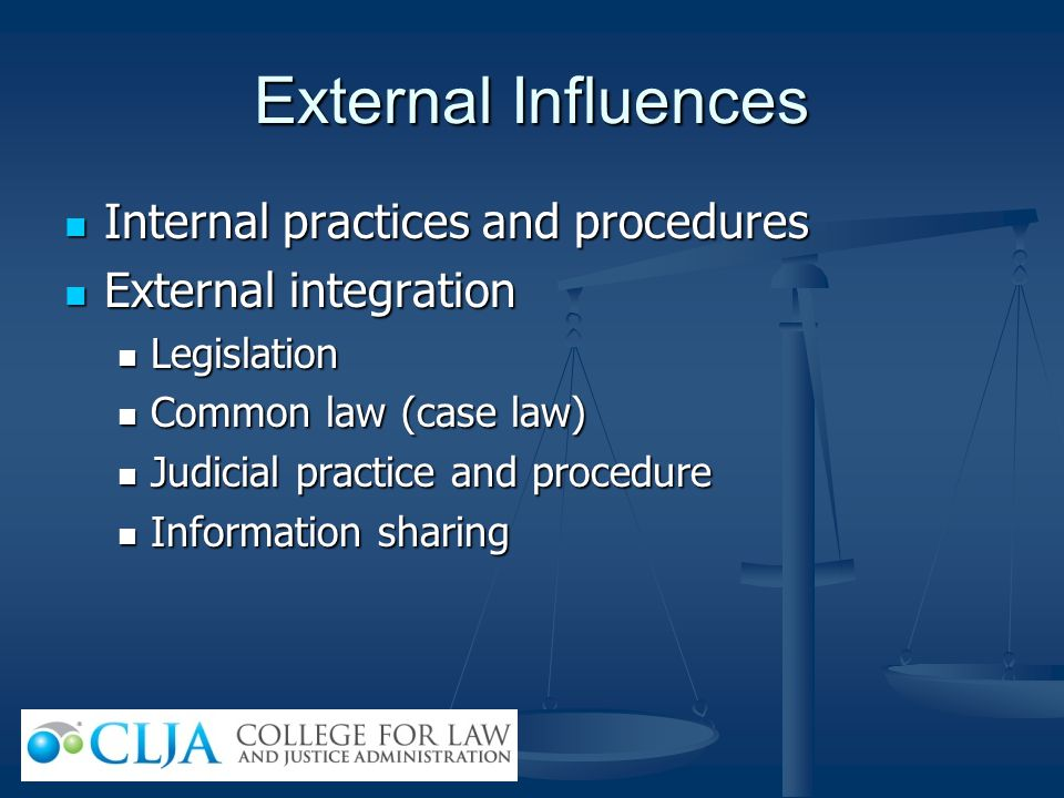 External Influences Internal practices and procedures