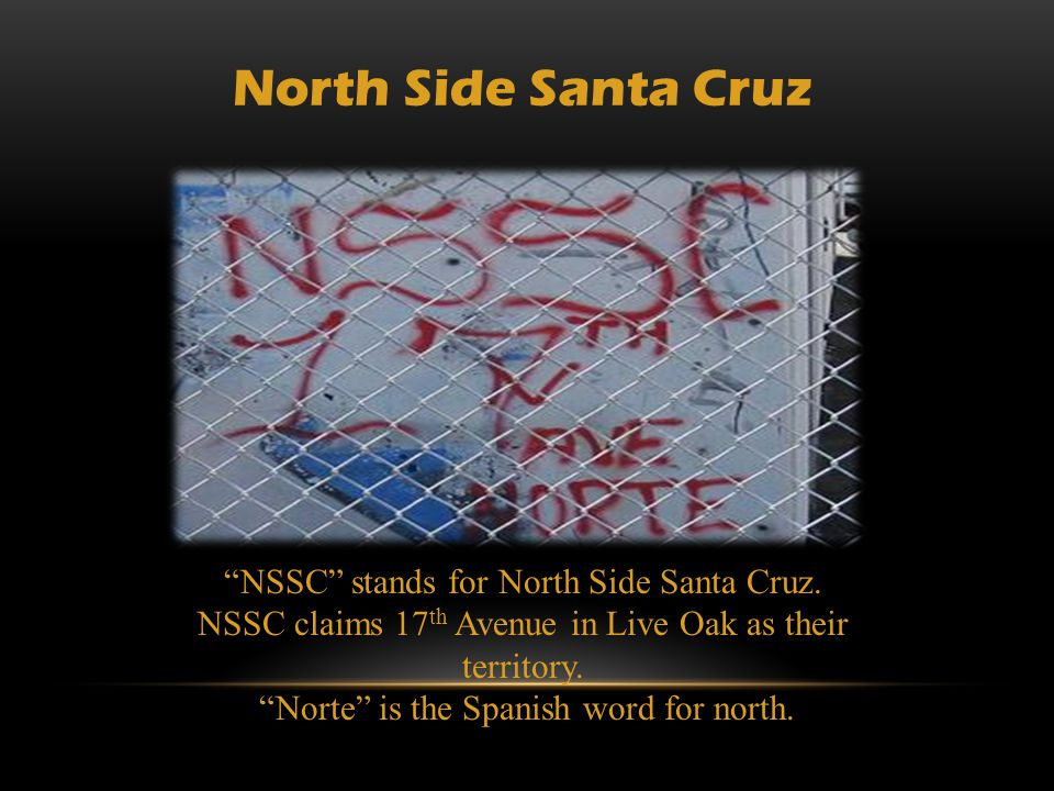 North Side Santa Cruz NSSC stands for North Side Santa Cruz.