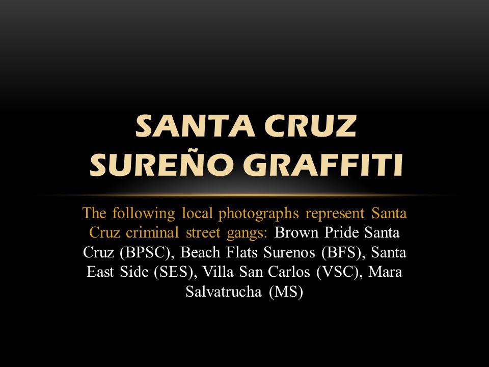 Santa Cruz SureÑo Graffiti