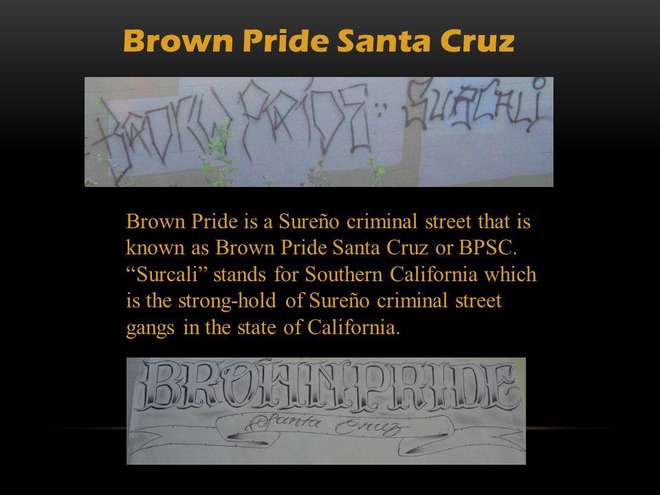 Brown Pride Santa Cruz