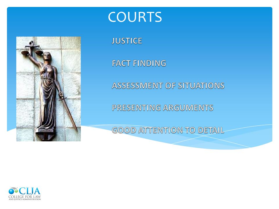 COURTS JUSTICE FACT FINDING ASSESSMENT OF SITUATIONS