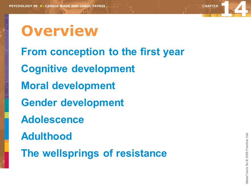 14 Overview From conception to the first year Cognitive development
