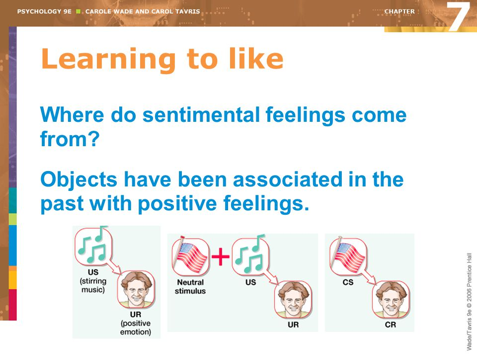 7 Learning to like Where do sentimental feelings come from