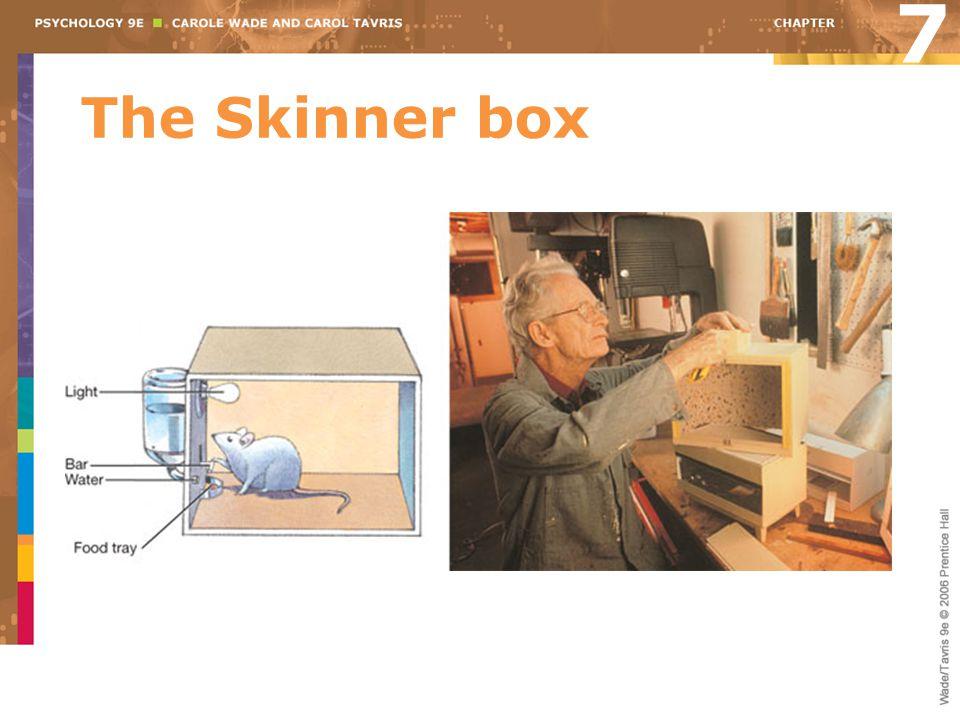7 The Skinner box