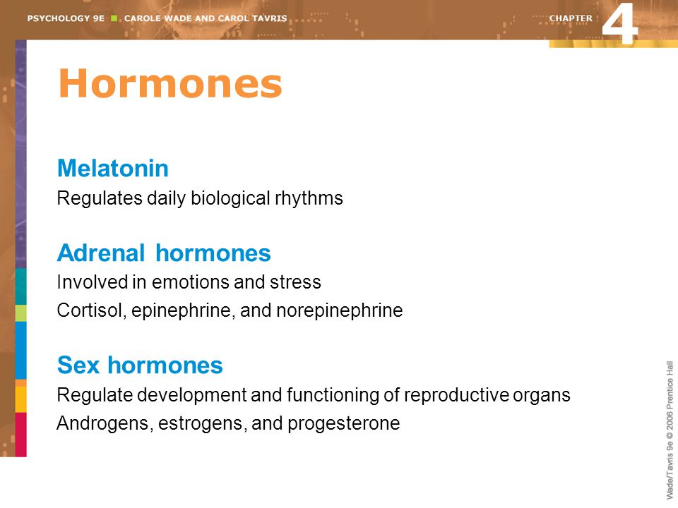 4 Hormones Melatonin Adrenal hormones Sex hormones