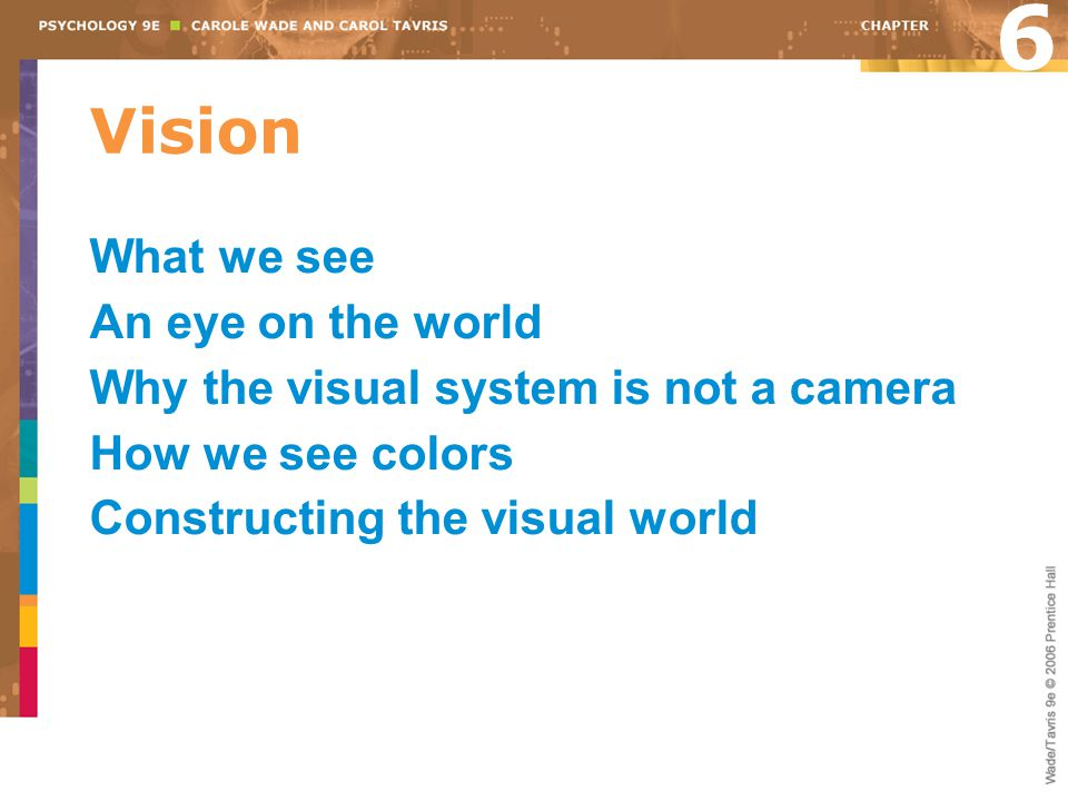 6 Vision What we see An eye on the world