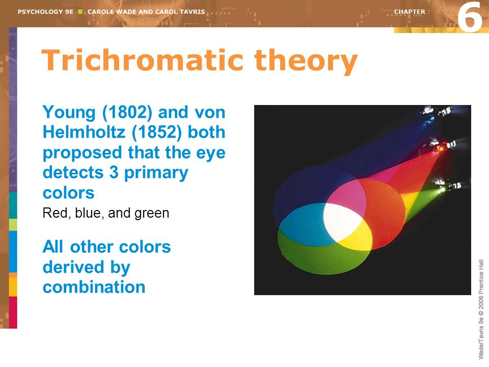 6 Trichromatic theory. Young (1802) and von Helmholtz (1852) both proposed that the eye detects 3 primary colors.