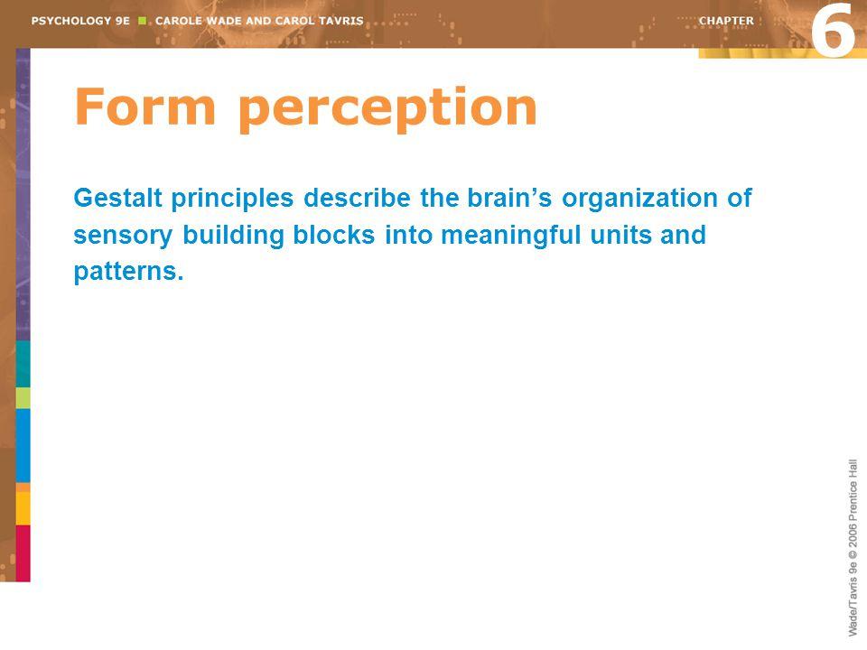6 Form perception.