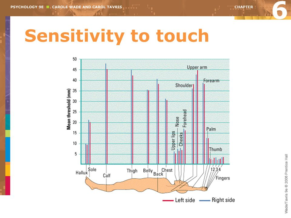 6 Sensitivity to touch