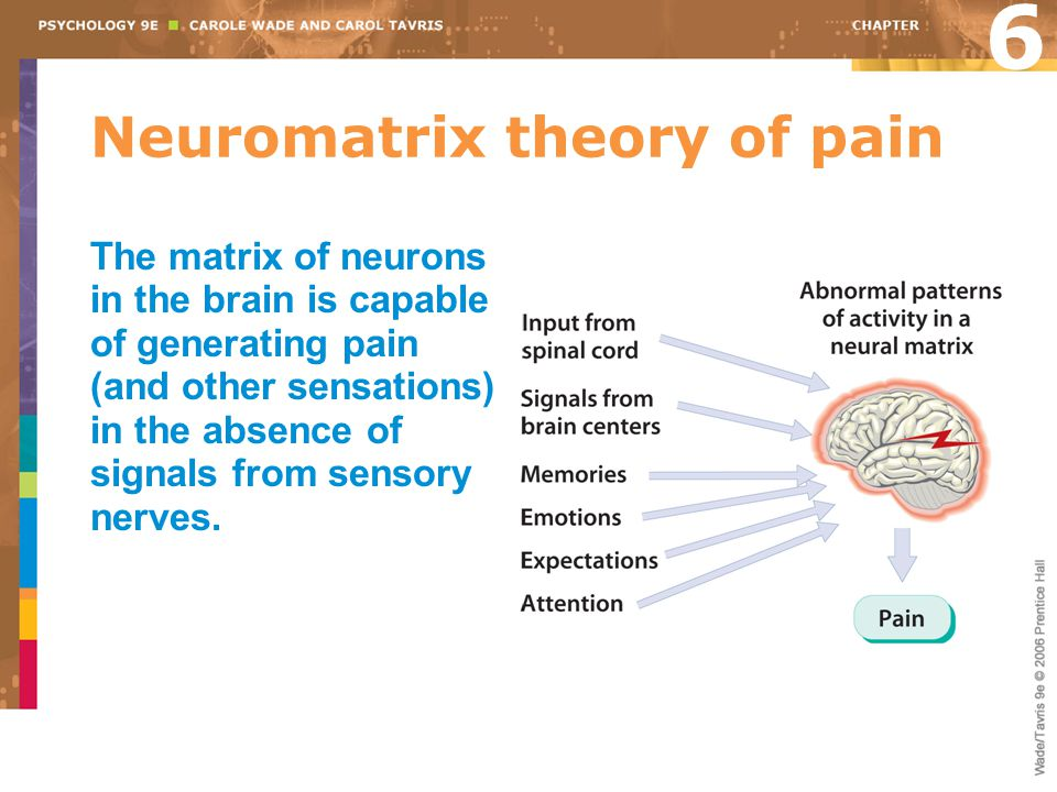 Neuromatrix theory of pain