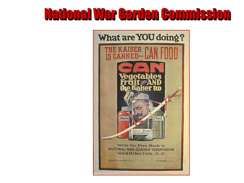 National War Garden Commission