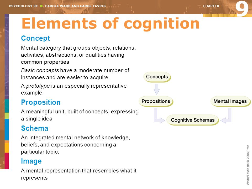 9 Elements of cognition Concept Proposition Schema Image