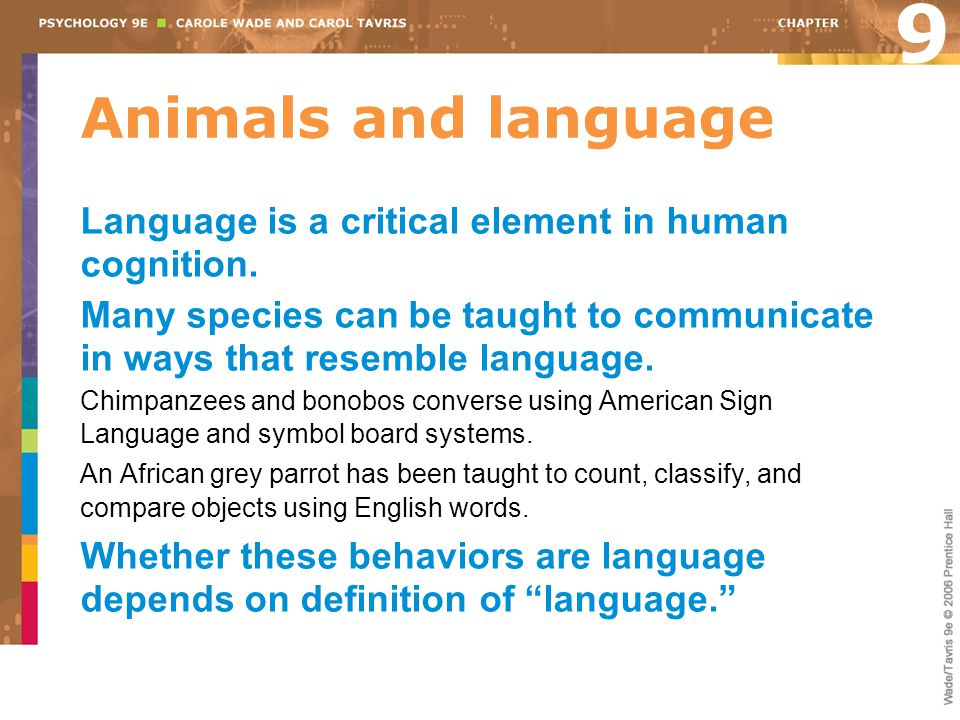 9 Animals and language. Language is a critical element in human cognition.
