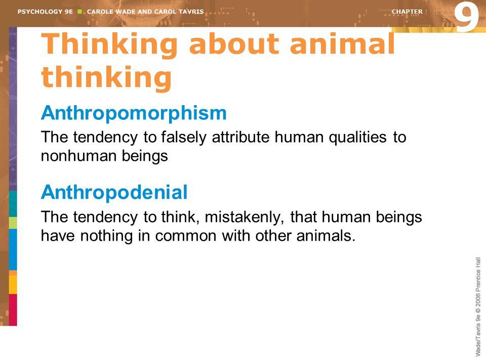 Thinking about animal thinking