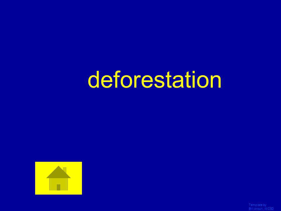 deforestation Template by Bill Arcuri, WCSD