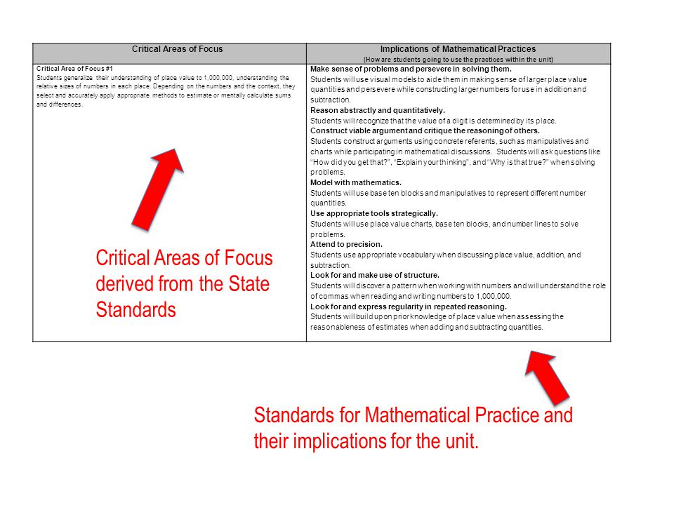 Critical Areas of Focus derived from the State Standards
